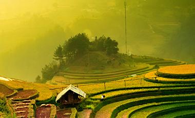 农业云在贵阳落地化雨